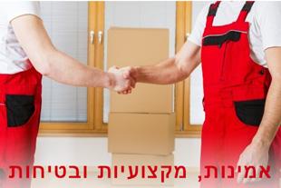 מובילי מור - הובלות בחיפה